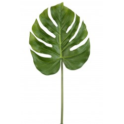 Philodendron Real Touch...