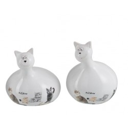 Chat Miauw (S)